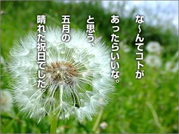 070507_08
