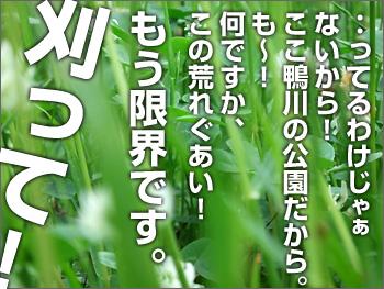 Bl_080705_04